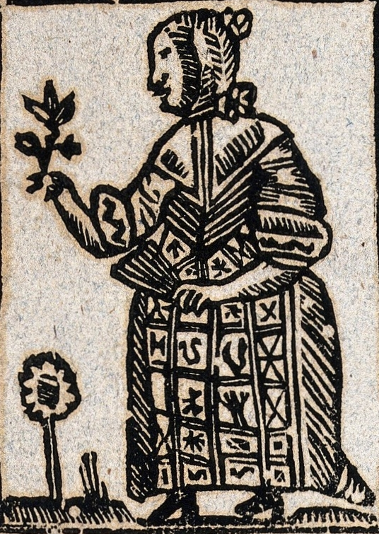 The witch as herbalist